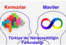 Türkiye'de Nöroçeşitliliğin Farkındalığı : Kırmızılar ve Maviler